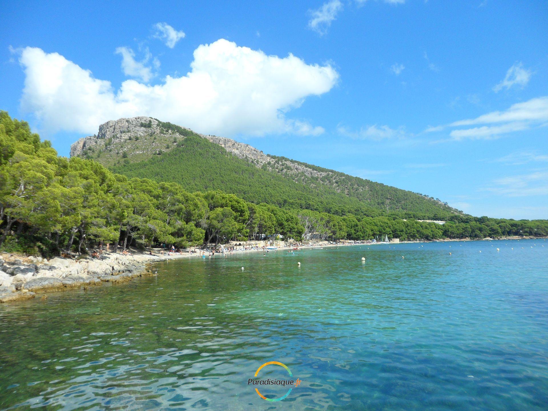 Cala Millor, Alcudia et Es Trenc à Majorque